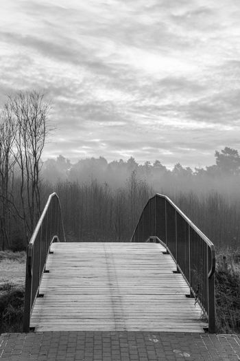 Beauty In Nature Blackandwhite Bridge - Man Made Structure Day Footbridge Nature No People Outdoors Railing Sky The Way Forward Tranquility Tree Wood Paneling
