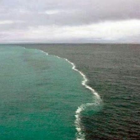 Cape Point, África do Sul encontro dos oceanos Índico e Atlântico. Molome Instaafrica