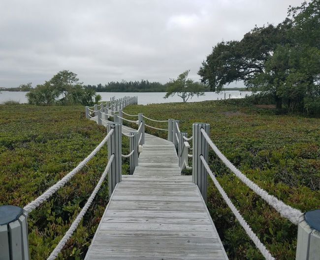 Social Issues Outdoors Wheelchair Access No People Day Nature Reserve Nature Elevated Walkway