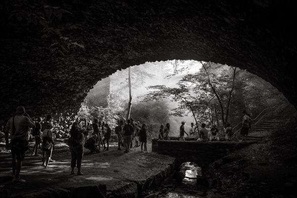 TakeoverContrast Large Group Of People Leisure Activity Lifestyles Tree Men Park - Man Made Space Arch Indoors  Travel Destinations Person Tourism Enjoyment Arched Famous Place Day Tunnel Archway Garden History Visit Bnw Bnw_friday_eyeemchallenge Bnw_collection Blackandwhite