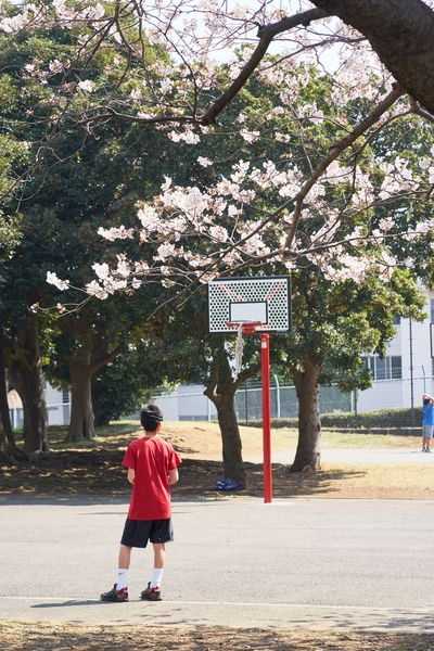 Nature Photography Eyeemphotography EyeEm Best Shots Sakura Sports Basketball Tree Full Length Rear View Real People Plant One Person Lifestyles Leisure Activity Women Transportation Growth Sunlight Outdoors Road City Built Structure Men Nature Day Casual Clothing