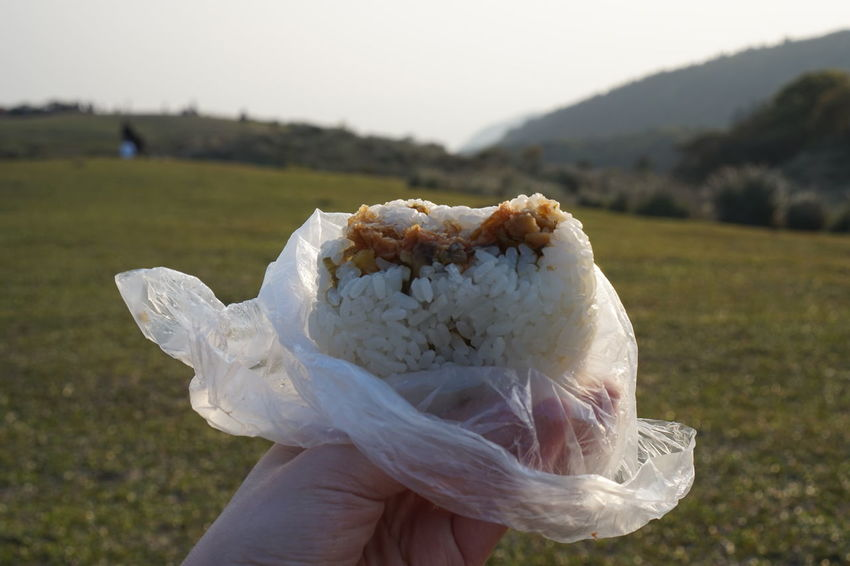 Nature Picnic Rice Taiwan Travel Trip YangMingShan Day Field Food Foodphotography Human Hand Lifestyles Lunch Box Nature Nature_collection Outdoors Plant Rice Ball Sony SonyA5000 Sonyphotography Taipei Travel Destinations
