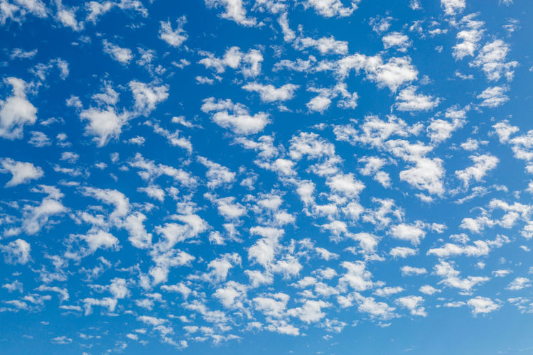 Looking up at white clouds against a blue sky Backgrounds Beauty In Nature Blue Cloud - Sky Cloudscape Day Environment Full Frame Heaven Idyllic Low Angle View Meteorology Nature No People Outdoors Scenics - Nature Sky Sunlight Tranquil Scene Tranquility White Color