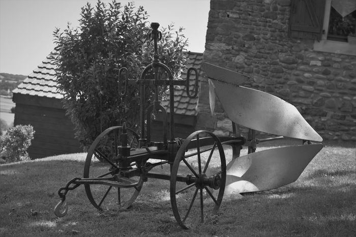 Agriculture Field France Agritourism Grass Horse Horsespower Old Old Engeneering Old-fashioned Plow