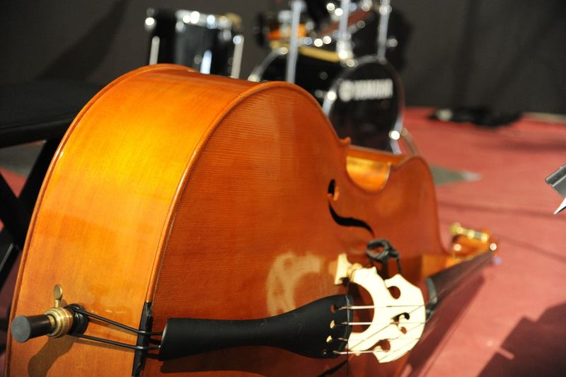 Concerts Violin Music Musical Instrument Musical Equipment Music Festival Music Photography  Red