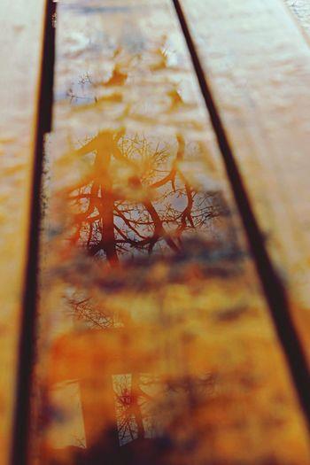 Yansıma ıslak Sonbahar Like 😊