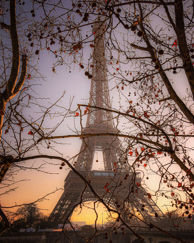 Low angle view of eiffel tower seen through bare tree against sky at sunset