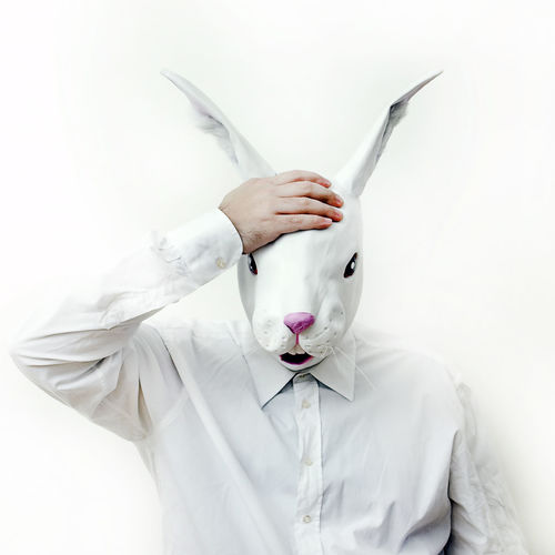 Focus On Foreground Front View Funny Funny Faces Holding Indoors  Looking Mask Masked Oh My God! One Person Rabbit Rabbit Man Serious Standing Studio Shot Three Quarter Length