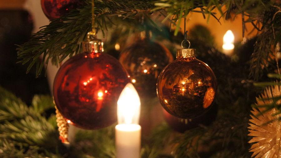 Middl Christmas Christmas Decorations Decoration Enjoying Life Kugel Light Tannenbaum Weihnachten Weihnachtsbaum Weihnachtsbaumschmuck
