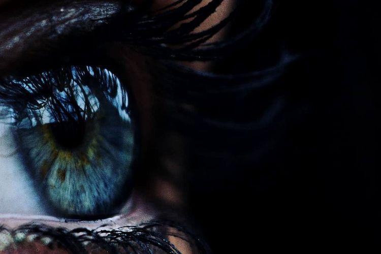 In cosa ci perdiamo? Eye Eyes Sea Occhi Blue Eyeball Eyelash Eyesight Human Eye Sensory Perception Beautiful Woman Iris - Eye Portrait Women Beauty First Eyeem Photo The Portraitist - 2018 EyeEm Awards