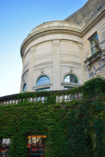 UW Madison Wisconsin Arch Architecture Building Building Exterior Built Structure Clear Sky College Day Green Color History Low Angle View Luxury Nature No People Outdoors Plant Sky The Past Tourism Travel Travel Destinations Tree University