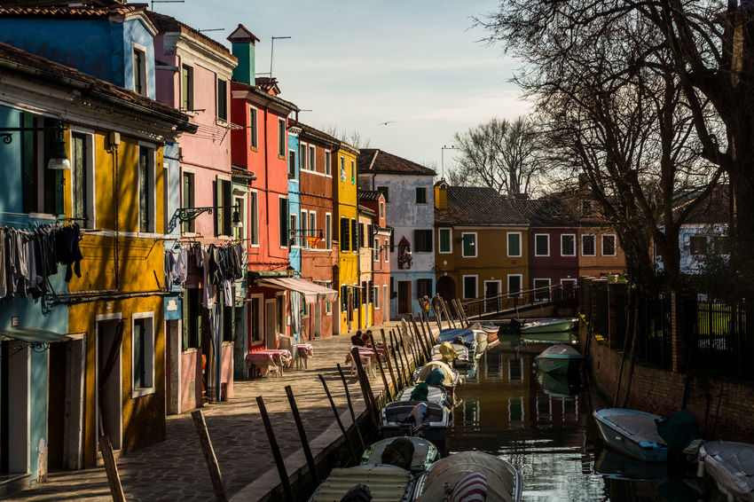 All those colors of Burano... Colors Pastel Power Tourist Attraction  Architecture Building Exterior Built Structure Burano City Colorful Day Golden Hour Italy No People Outdoors Residential Building Sky Tourism Tree
