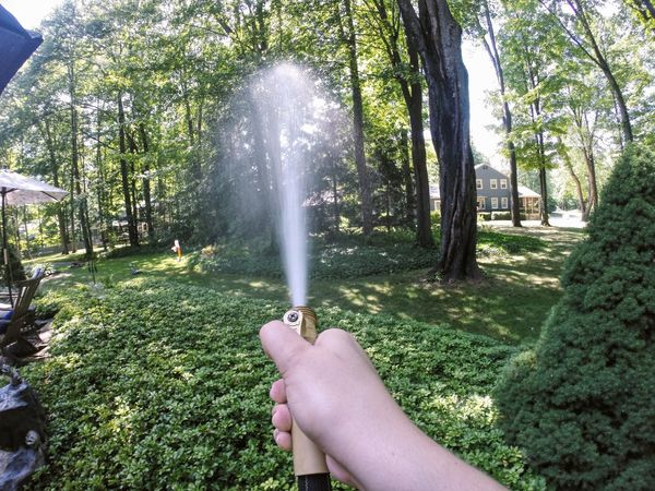 Water Outdoors EyeEm EyeEm Best Shots Outside Gopro Goprooftheday Nature Popular Photos Check This Out EyeEm Nature Lover EyeEm Gallery Backyard EyeEmBestPics Green Green Color Hand
