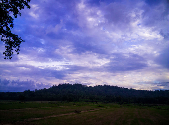 Nature view Sky Cloud - Sky Beauty In Nature Environment Scenics - Nature Tranquility Tree Tranquil Scene Landscape Nature Plant No People Land Non-urban Scene Outdoors Growth Mountain Field Idyllic Sunset