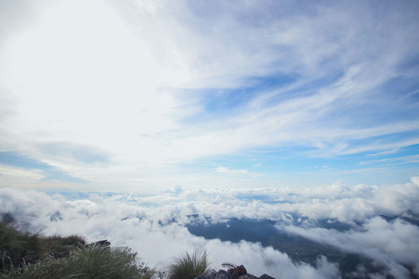 Chiang Rai Chiang Rai, Thailand Sun Rise Mist Phucheefah Sea Of Mist