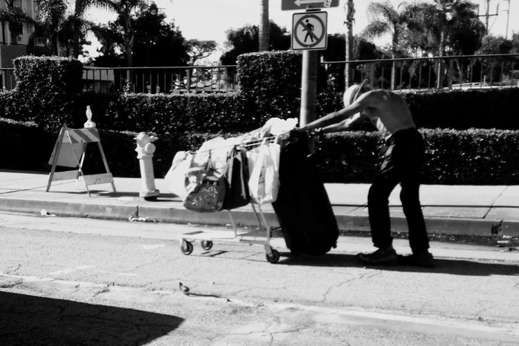 """South Central Struggle"" (Model; Homeless Man & Shopping Cart - April 2016) ©2016TLH Los Angeles, California Homelessness  South Central Los Angeles South Central Street Art Street Photography Street Life Shopping Cart Hobo Bums Views From Uber The Street Photographer - 2016 EyeEm Awards"