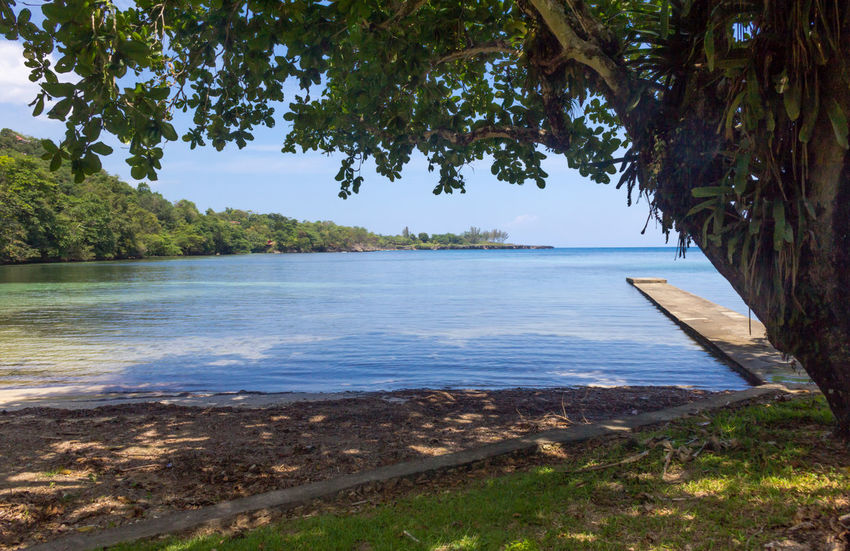 Pier Shade Beach Beauty In Nature Caribbean Jamaica Landscape Nature No People Outdoors Sea Tranquil Scene Tree Tropical Climate Water Wilks Bay Port Antonio Breathing Space