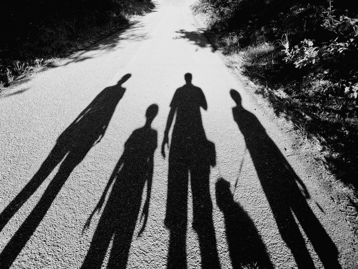 Shadow of people with dog on road