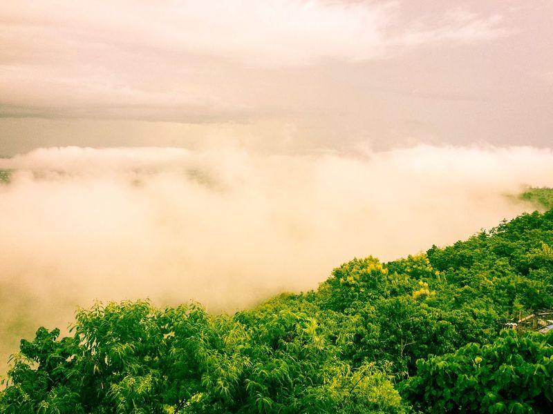 Eyeem Philippines EyeEm Selects Foggy Day Top View Cloud - Sky Beauty In Nature Cagayan De Oro City Hugo Lounge Eyeem CDO CDO Aerial View Foggy Fogstagram
