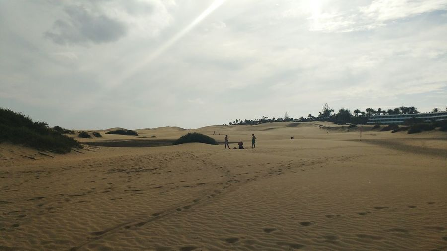 Sand Beach Landscape Desert Nature Outdoors Sand Dune Travel Destinations Playground Vacations Sky Scenics Beauty In Nature Day Maspalomas Canary Islands Playa Del Ingles