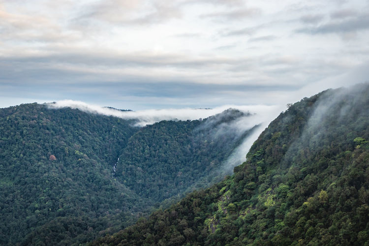 Mountain horizon coverd with cloud layers and forests