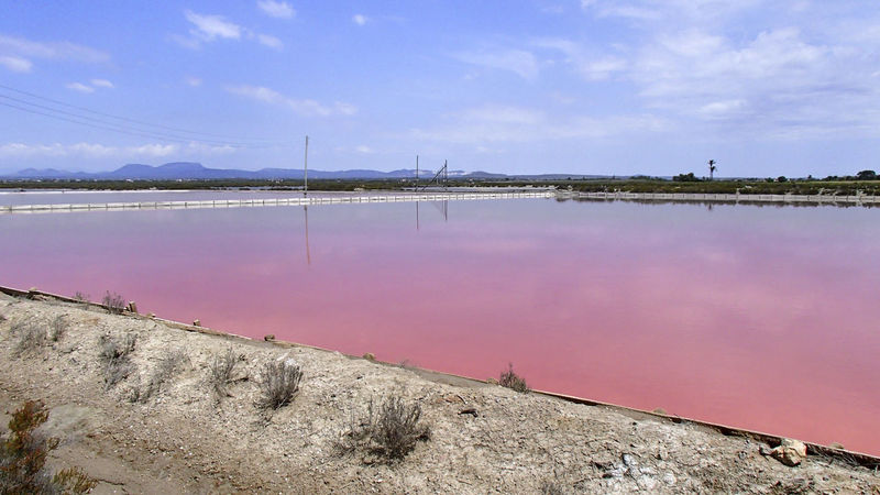 Purple bright shining lake in a salt Saline Bright Colored Pink Salt Shine Shining Beauty In Nature Cloud - Sky Day Nature No People Outdoors Reflexions Salt - Mineral Salt Basin Sky Violet Water