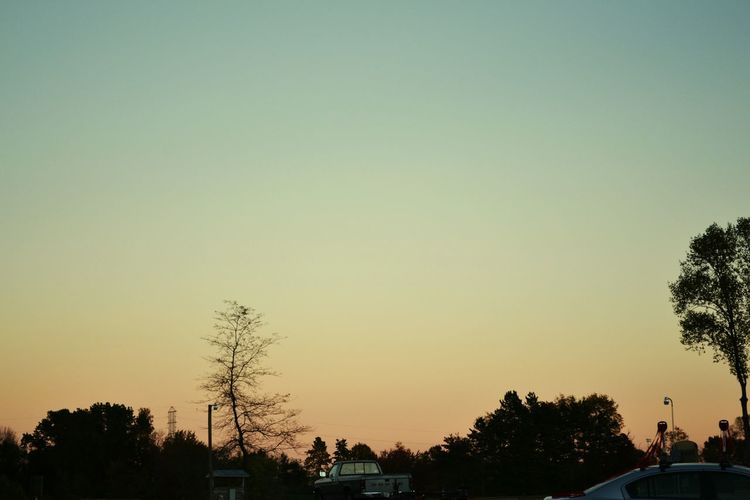 Silhouette of trees against sky at sunset