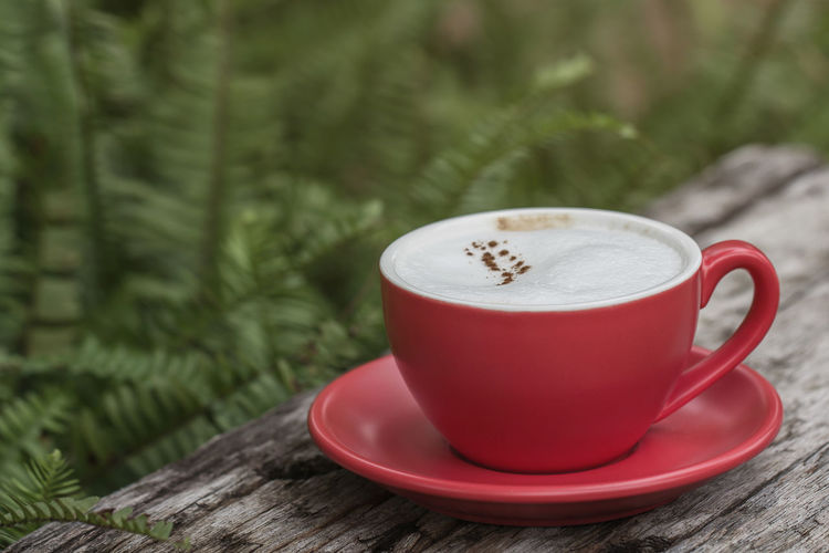 Red coffee cup on wooden table with leaf background. Green Hot Morning Cappuccino Coffee Coffee - Drink Coffee Cup Cup Drink Food And Drink Hot Drink Latte Saucer Table Tea Cup Tree Wood - Material