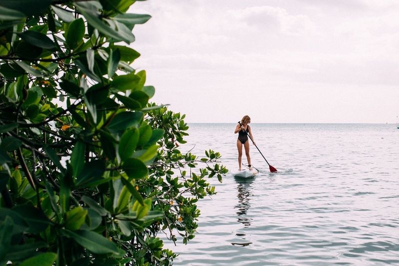 Back from Paddleboarding session | Girl Bodysuit Ocean Horizon Over Water Plants Water Sporting Activities Beach