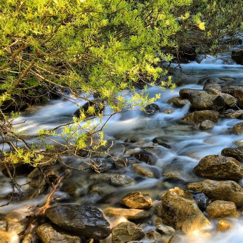 ParqueNacional Nationalpark Nature Nature Photography Aragón Spain Is Different Spainiswonderful Spain_beautiful_landscapes Spain♥ Mytinyatlas Mytinymoments SPAIN Aragonmiamor Aragonmola