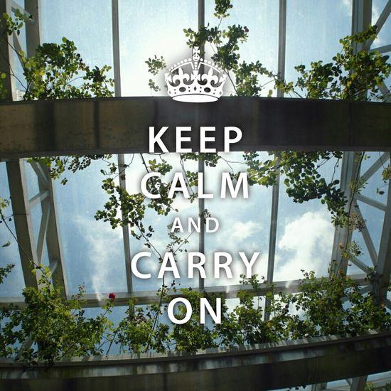 Keep going, keep chasing. Keepcalm Carry On Faith