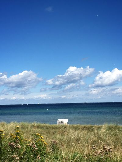 Sea Tranquil Scene Horizon Over Water Sky Tranquility Beach Grass Beauty In Nature Vacations Travel Destinations Ostsee Strandkorb Cloud - Sky Nature Blue Relaxing Moments Perfect Day Breathing Space