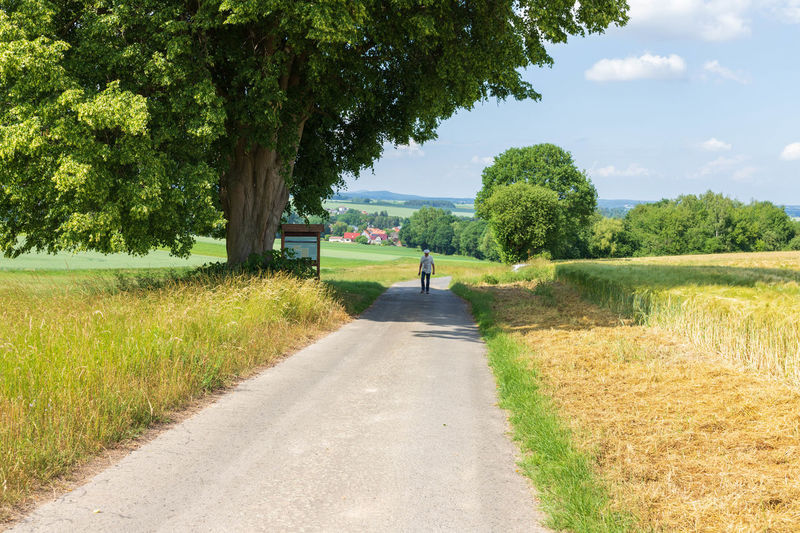 road amidst trees on field against sky Baum Beauty In Nature Day Diminishing Perspective Direction Field Footpath Grass Green Color Growth Juni Land Landscape Nature Outdoors Plant Road Sky The Way Forward Tranquil Scene Tranquility Transportation Tree