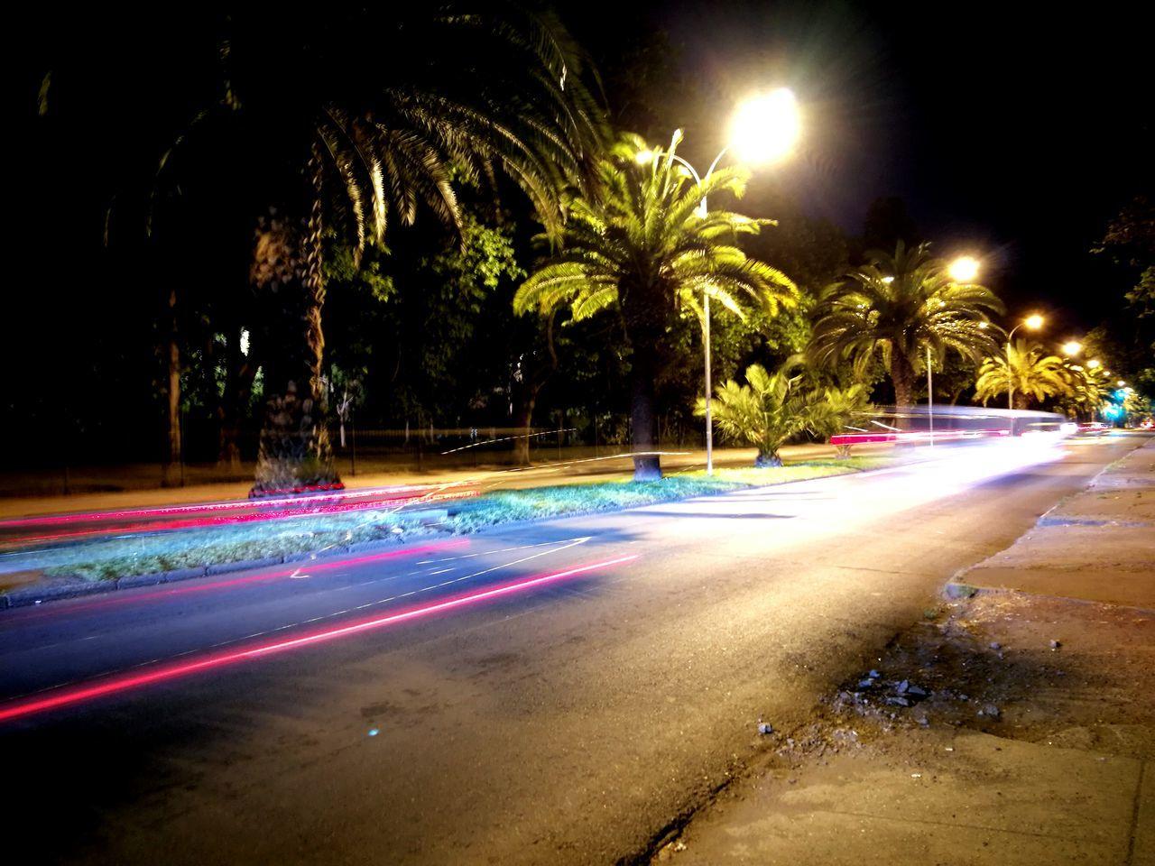night, illuminated, long exposure, street light, street, light trail, road, motion, outdoors, speed, no people, tree, palm tree, water, sky, nature, city