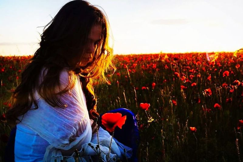 Atardeceres #amapolas #flowers #longhair  #girl #woman # Sunset Growth Field Poppy Plant