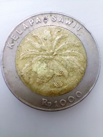 1000 Indonesian rupiah in 2000 Shope 1000 2000 Years INDONESIA Money One Thousand Gold Gold Colored Coin Currency Finance Luxury Wealth Studio Shot Metal Close-up Money Piggy Bank Silver Colored Allowance Allowance Investment Investment Investment Fifty Euro Banknote Fifty Euro Banknote Platinum Silver