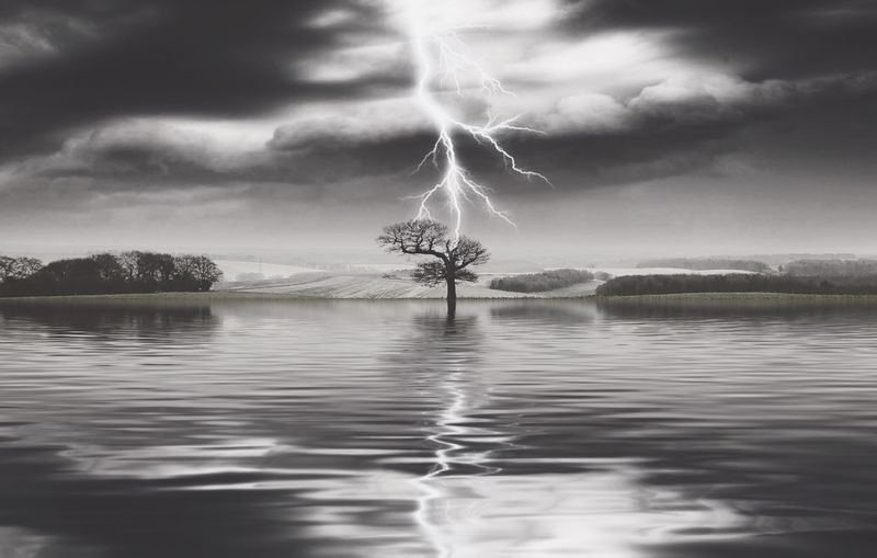 Lightning Strike Cloud - Sky Sky Water Reflection Beauty In Nature Waterfront Nature Tree Scenics - Nature No People Storm Tranquility Day Plant Outdoors Tranquil Scene Lake Power In Nature
