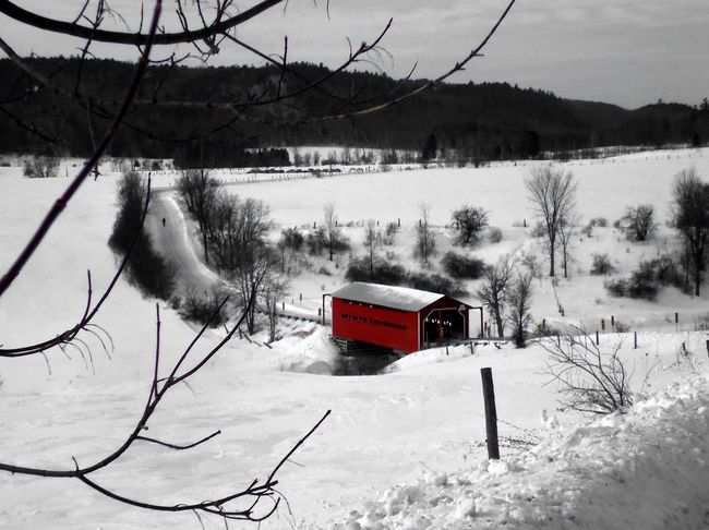 An old tyme Christmas scene. I can just picture the one-horse, open sleigh. Animal Themes Bare Tree Beauty In Nature Christmas Scene Cold Cold Temperature Country Christmas Covered Bridge Covered Bridge Over River Day Field Frozen Landscape Nature No People Outdoors Scenics Sky Snow Snowdrift Snowing Tree Vintage Christmas Weather Winter