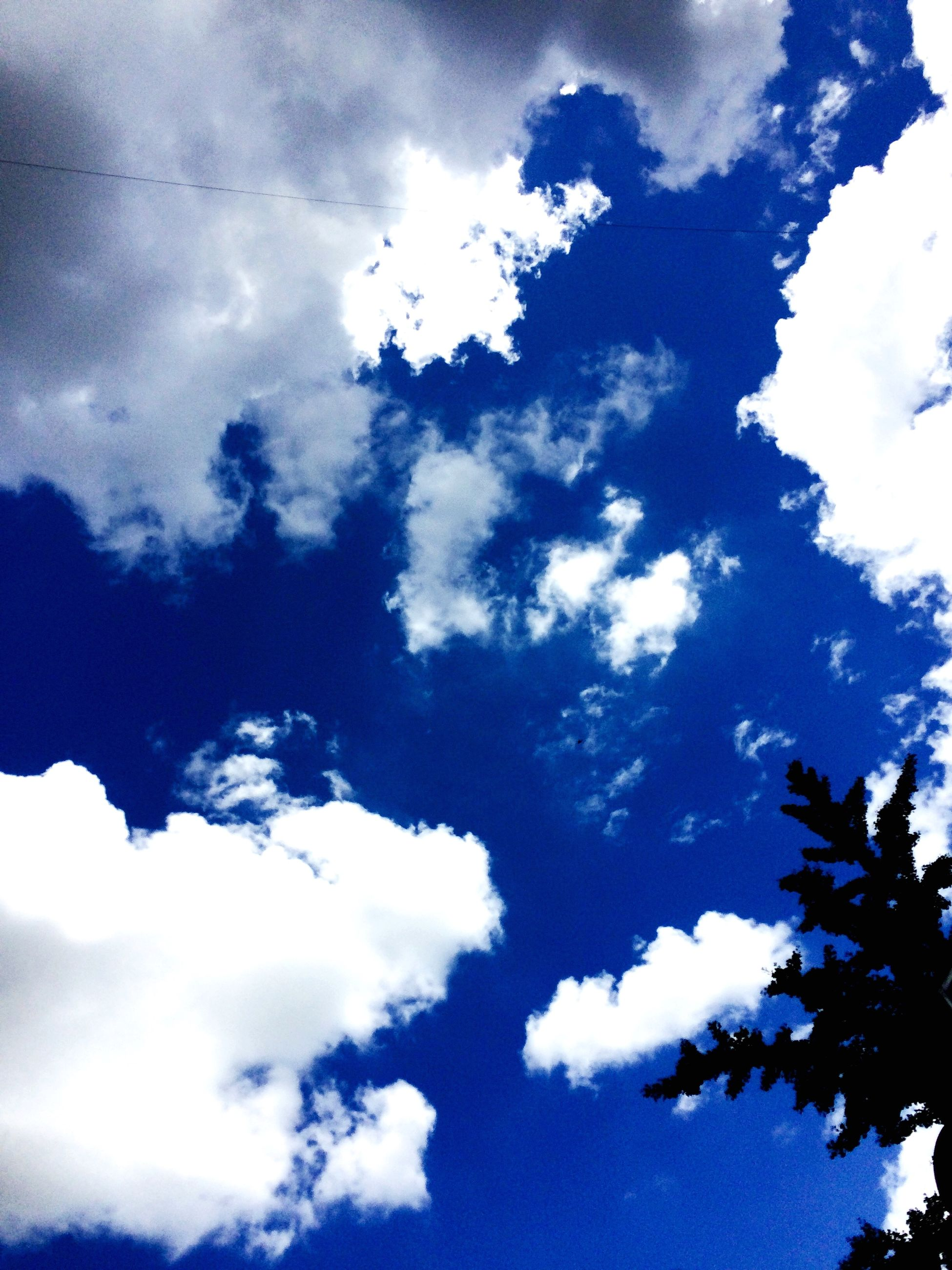 low angle view, sky, cloud - sky, cloudy, blue, cloud, beauty in nature, nature, tranquility, scenics, cloudscape, day, tranquil scene, outdoors, no people, tree, sky only, white color, high section, idyllic