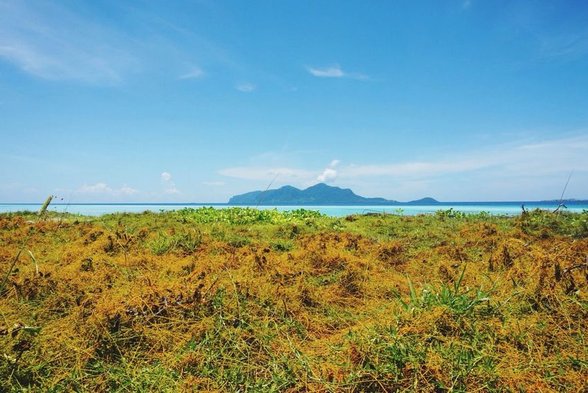 Landscape Tranquil Scene Scenics Nature Sky Tranquility Island Sibuan Island, Borneo Grass Field Outdoors Day No People Mountain Blue Growth Plant Sea
