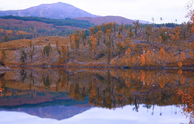 Autumn in Scotland Autumn EyeEm Nature Lover EyeEmNewHere Scotland The Week On EyeEm Beauty In Nature Day Eye4photography  Lake Mountain Nature No People Outdoors Reflection Scenics Sky Tranquil Scene Tranquility Tree Water Waterfront
