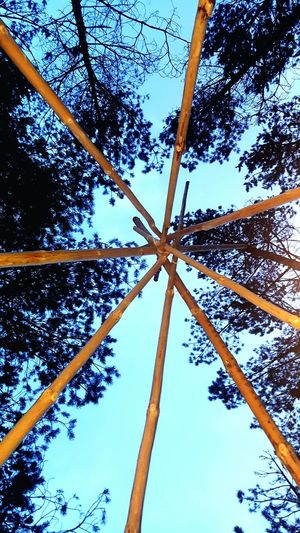 The Secret Spaces Gällsjön Västra Götaland Karlsborg Sweden Tree Sky Building A Tipi Directly Below Colour Of Life Outdoors Tipi Nature No People Just A Ordinary Day Lights