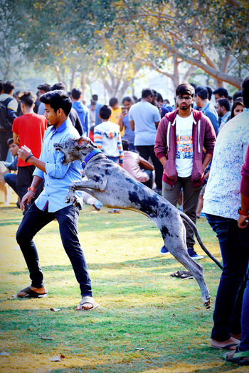 Dog Dog Attack Dog Bite Animal Themes Animals In The Wild Animal Photography Sport Full Length Youth Culture Crowd Fun Playing Field Togetherness Men Event Grass Holiday Moments EyeEmNewHere The Portraitist - 2019 EyeEm Awards