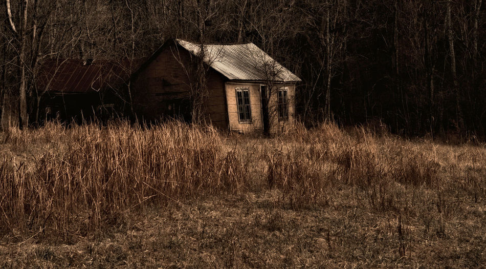 Abandoned house on grass against trees