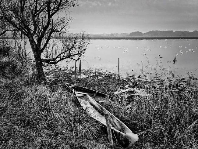 Nature Landscape Tranquility Iphonegraphy Blackandwhite Mono Chrome