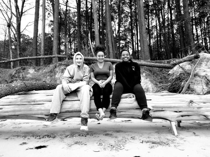 Portrait Of Smiling Friends Sitting On Fallen Tree At Beach