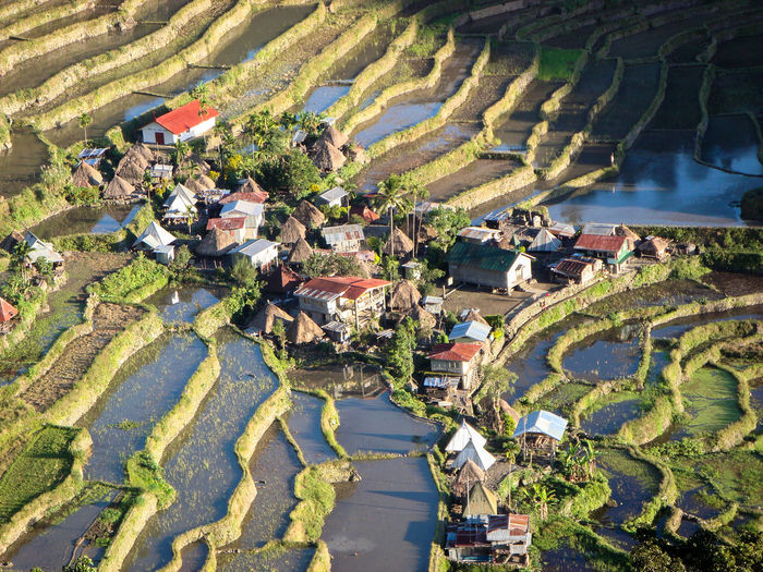Village Sunrise Miles Away Village Batad Philippines Rice Farming Mountain Farming Rice Terraces Ifugao UNESCO World Heritage Site Heritage Site Old And New Tribe Tribal Lands Eyeem Philippines Mountain Rice Agriculture Aerial View High Angle View Outdoors Patchwork Landscape Tree Day Terraced Field History Rural Scene Nature Rice Paddy Beauty In Nature No People