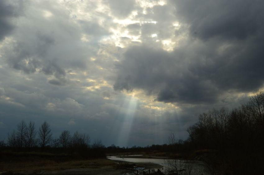 sky Tree Cyclone Thunderstorm Storm Cloud Sky Cloud - Sky