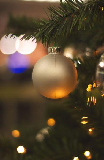 Christmas Christmas Decoration Decoration Celebration Tree christmas tree Focus On Foreground Close-up Celebration Event No People Light Illuminated
