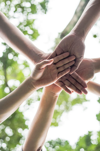 Low angle view of people stacking hands against trees
